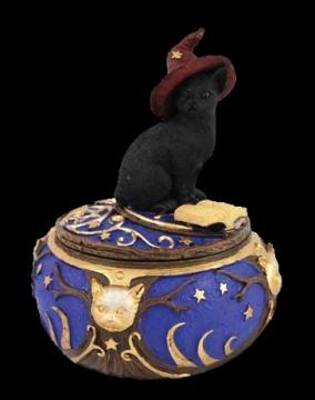黑色猫咪简笔画彩色